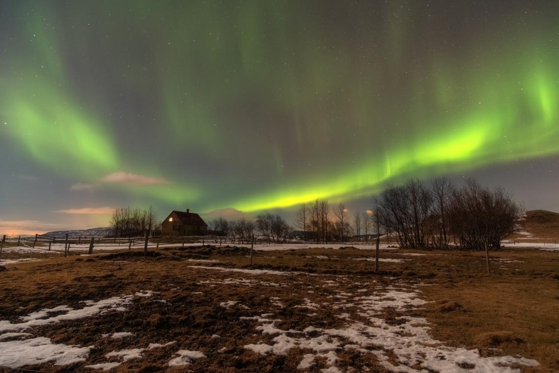 Island Februar 2019 jpegs (5)